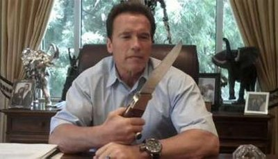 Schwarzenegger boasts knife on Twitter video